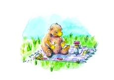 bear picnic